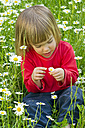 Germany, Girl sitting in flower field - LVF000118