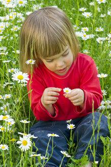 Germany, Girl sitting in flower field - LVF000118