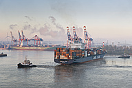 Germany, Hamburg, Container harbour seen from Elbchaussee - MS002964