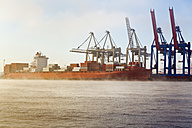 Germany, Hamburg, Container ship on River Elbe - MS002962