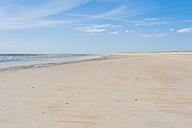 Denmark, Romo, Sand dunes at North Sea - MJF000245