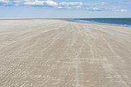 Denmark, Romo, Sand dunes at North Sea - MJF000258