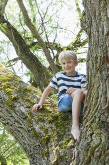 Germany, Bavaria, smiling boy sitting on a tree - NH001415