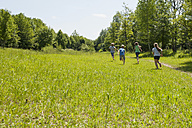 Germany, Bavaria, four children runnig on a meadow - NH001378