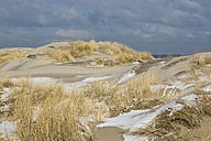 Germany, Coast with snow at Spiekeroog - STS000056