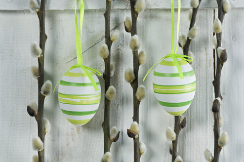 Easter eggs with pussy willow twigs hanging on wooden door, close up - ASF005028