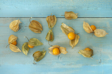 Physalis on wooden table, close up - OD000209
