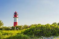 Germany, Schleswig Holstein, View of Lighthouse Falshoft at Nature Reserve Geltinger Birk - MJF000287