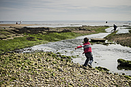 Great Britain, Scotland, Fife, Anstuther, boy throwing stones into water - SBDF000190