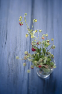 Germany, Baden Wuerttemberg, Bouquet of wild strawberries in glass - SBDF000109