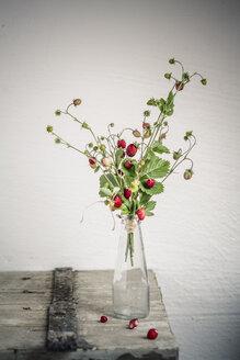 Germany, Baden Wuerttemberg, Bouquet of wild strawberries in bottle - SBDF000104