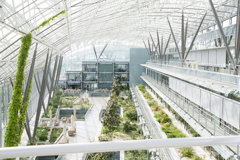 Germany, Hannover, Interior of greenhouse - KFF000117