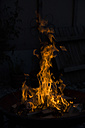 Bonfire - SARF000081