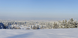 Germany, View of snowcapped tree during winter - LB000211