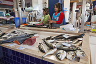 Portugal, Lagos, Fishmonger working in market hall - WD001785