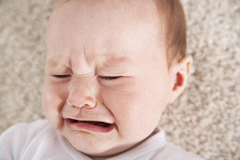 Germany, North Rhine Westphalia, Cologne, Baby girl crying, close up - PDF000367