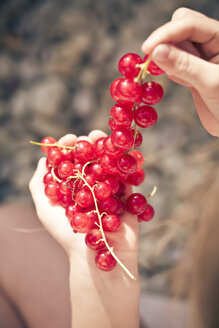 Germany, Bavaria, Girl holding bunch of red currants - SARF000098
