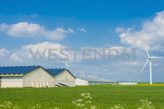 Germany, Schleswig-Holstein, View of solar panel on house roof - MJF000334 - Jana Mänz/Westend61
