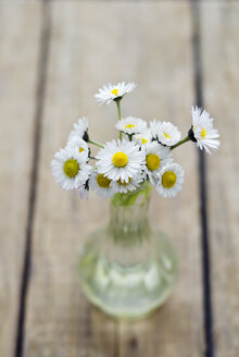 Daisies in vase on wooden table, close up - CZ000031
