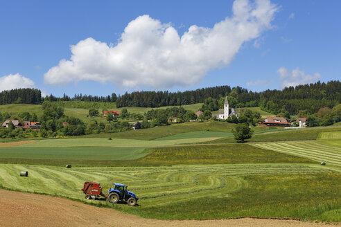Austria, Carinthia, View of Deinsberg village near Guttaring - SIE004273