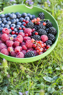 Germany, Bavaria, Bowl of berries on grass, close up - STB000010