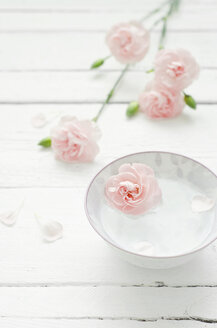 Dianthus flower with bowl of water on wooden table, close up - CZF000057