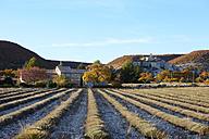 France, View of Alpes de Haute Provence - DHL000052