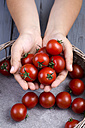 Hands with tomatoes - ODF000440
