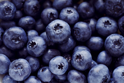 Studio, fresh blueberries, close-up - CZF000075