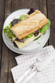 Baguette sandwich with stack of oplates, close up - ECF000334