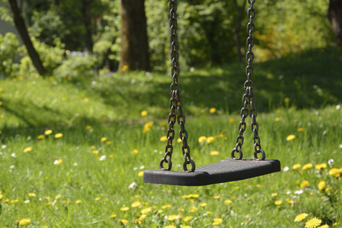 Swing and meadow - AXF000478