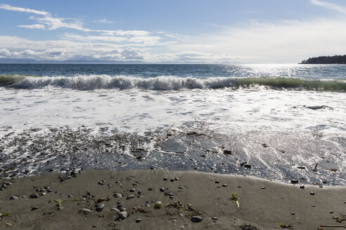 Canada, British Columbia, Vancouver Island, French Beach Provincial Park - FOF005249
