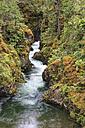 Canada, British Columbia, Vancouver Island, Little Qualicum Falls Provincial Park - FOF005280