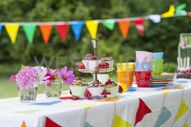 Table in garden on a birthday party - NHF001425