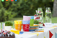 Table in garden on a birthday party - NHF001427