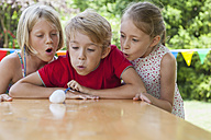 Children blowing cotton ball on garden table - NHF001465