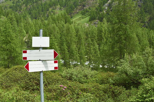 Italy, empty guidepost in forest of Valle Antrona - RKN000108