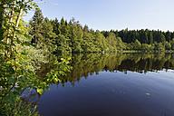 Germany, Bavaria, Pfaffenwinkel, Lake Engelsriede - SIEF004424