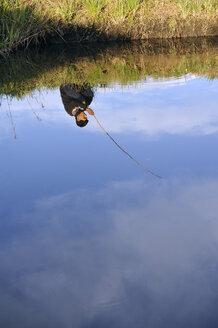 Paraguay, Caaguazu, Mbya-Guarani man fishing - FLK000084