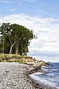 Denmark, Langeland, beach on the Baltic Sea - JFE000220