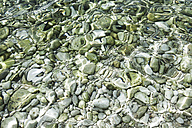 Croatia, Mediterranean Sea, ocean, pebbles at the ground - FMKF000886