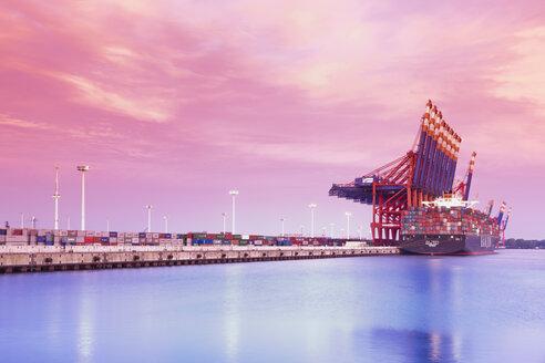 Gemany, Hamburg, Container harbour Waltershof - MS003016