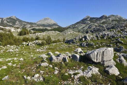Montenegro, Crna Gora, Karst landscape at Lovcen National Park - ES000589