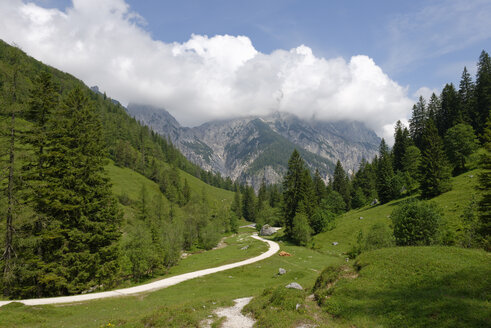 Germany, Upper Bavaria, Klausbach valley, hiking trail below the Reiteralpe in the Klausbach valley near the Bindalm, Berchtesgaden mountains - LB000300