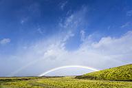 Iceland, Kirkjubaerklaustur, Rainbow in highlands - STSF000179