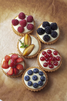 Six pies with vanilla pudding and different fruits on baking paper, studio shot - CSF020133
