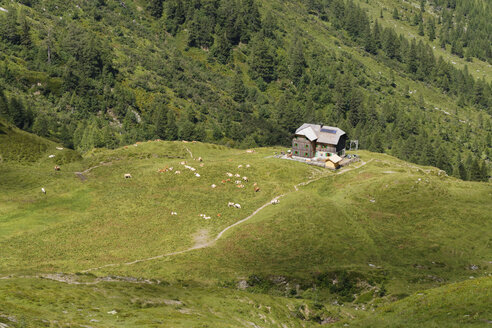Austria, Carinthia, Carnic Alps, Hochweisssteinhaus - SIEF004489