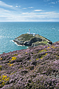 UK, Wales, Anglesey, Holy Island, cliff coast of South stack with lighthouse - ELF000530