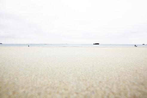 France, Bretagne, Beach in Tregastel - TL000721