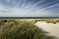 Holland, Westenschouwen, coast, North Sea - MYF000041